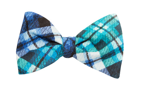 Lucky Guy in Blue Adult Bow Tie