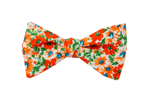 Tangerine Dream Youth Bow Tie