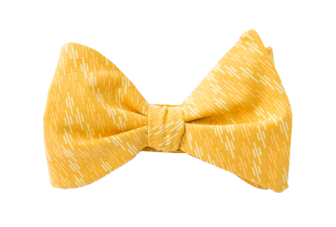 Ziggity Zag Yellow Youth Bow Tie
