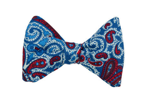 Windy Days Adult Bow Tie