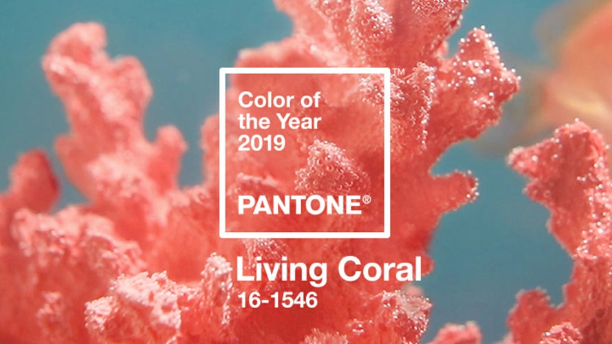 Pantone's Top 18 Spring 2019 Colors from NYFW & LFW