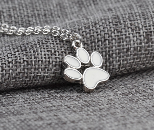 silver and white dog paw
