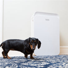 Aprilaire Allergy + Pet True HEPA Air Purifier Replacement Filter Removes Dander, Allergens, & Odors