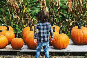 Top 5 Ways to Enjoy the Fall Weather With Your Kids