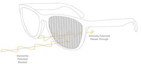 Polarization effect of kids wayfarer sungalsses