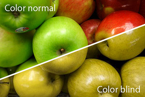color blindness more likely in men