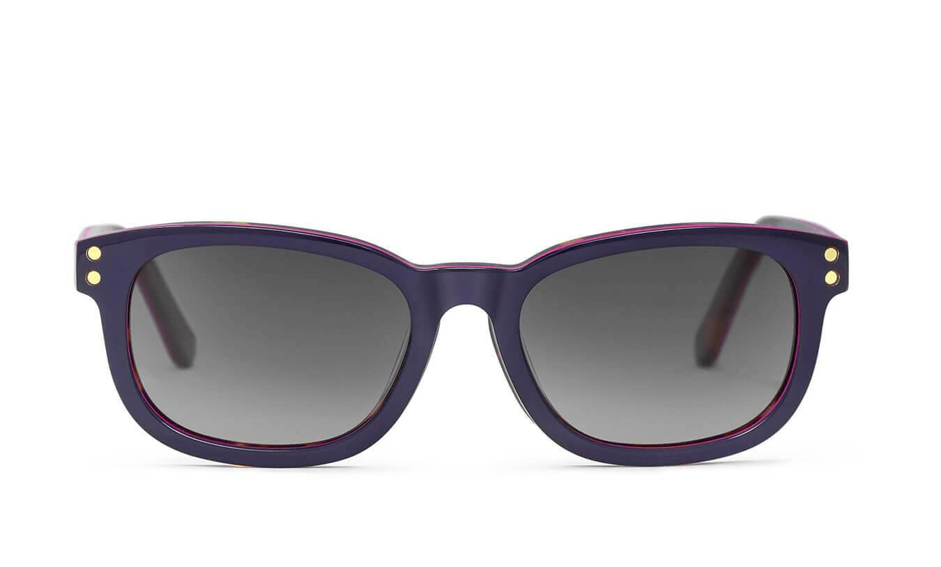 Brandon Navy Blue Polarized Sunglasses