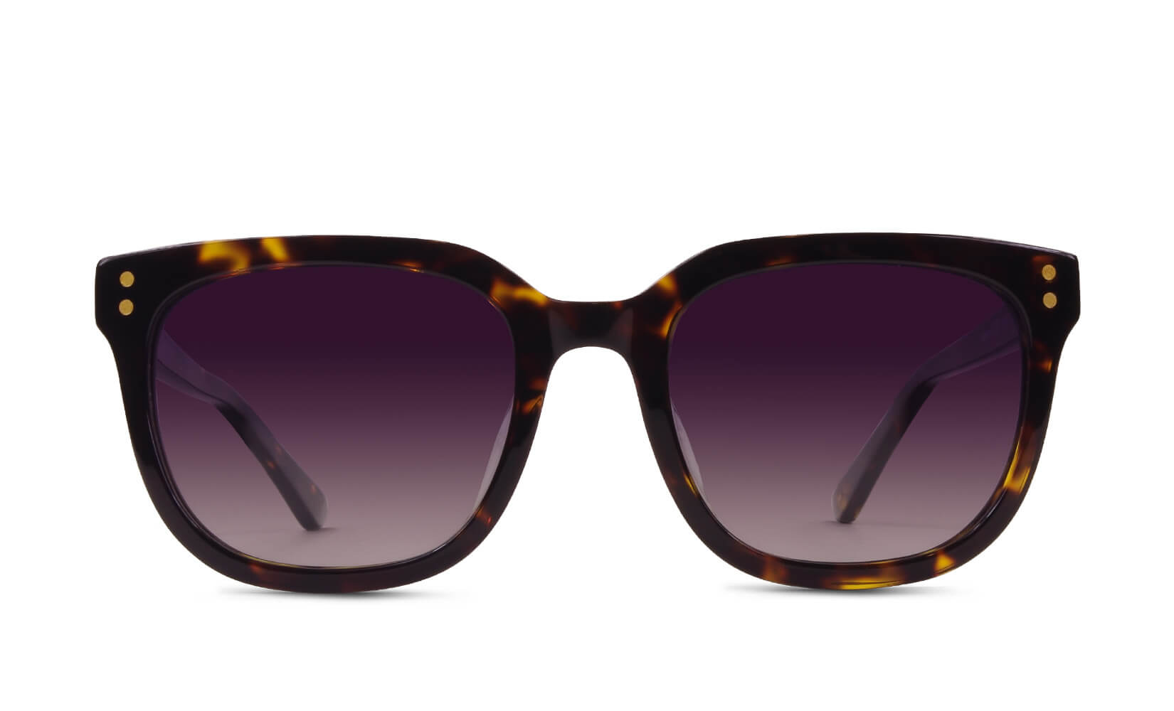 Dylan Classic Tortoise Polarized Sunglasses