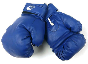 BOXING GLOVES BLUE $14.5/PAIR ### - Home Idol Home Improvement Outlet