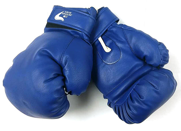 BOXING GLOVES BLUE $16/PAIR - Home Idol Vancouver