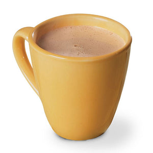 BariWise Hot Chocolate Cinnamon