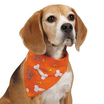 Aria Trick or Treat Dog Bandana - Orange