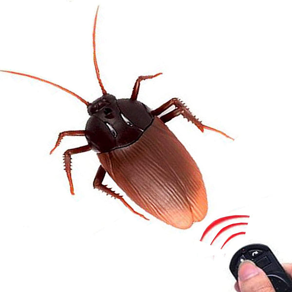 NiGHT LiONS TECH Remote Control cockroach Toy, RC Animal Toy Scary Trick Joke toy for Halloween Christmas - MASS Wholesalers