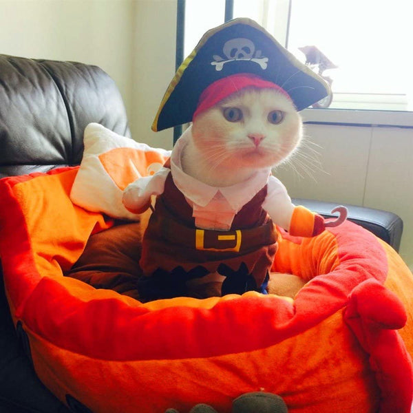 Pirate Cat Party Apparel With Hat - MASS Wholesalers