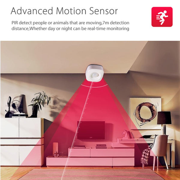 WIFI Human Body Infrared Sensor Switch PIR Motion Sensor Detector Anti Theft System Support IFTTT - MASS Wholesalers