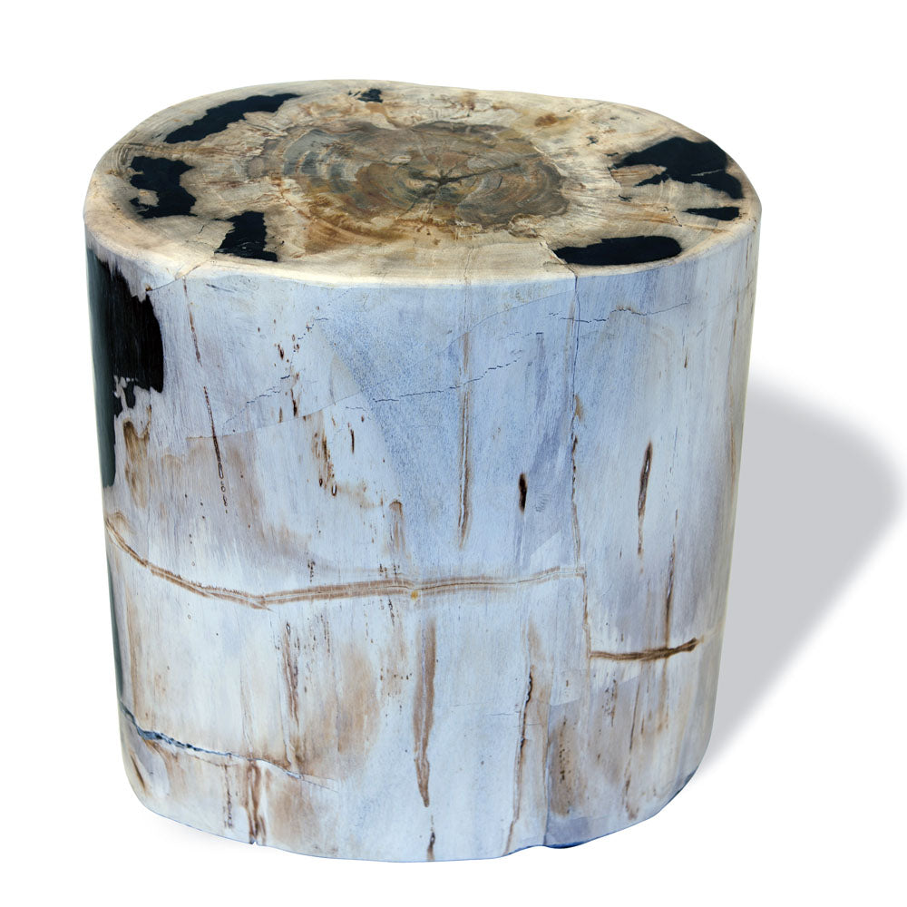 Petrified Wood Side Table White from Souk Collective UK