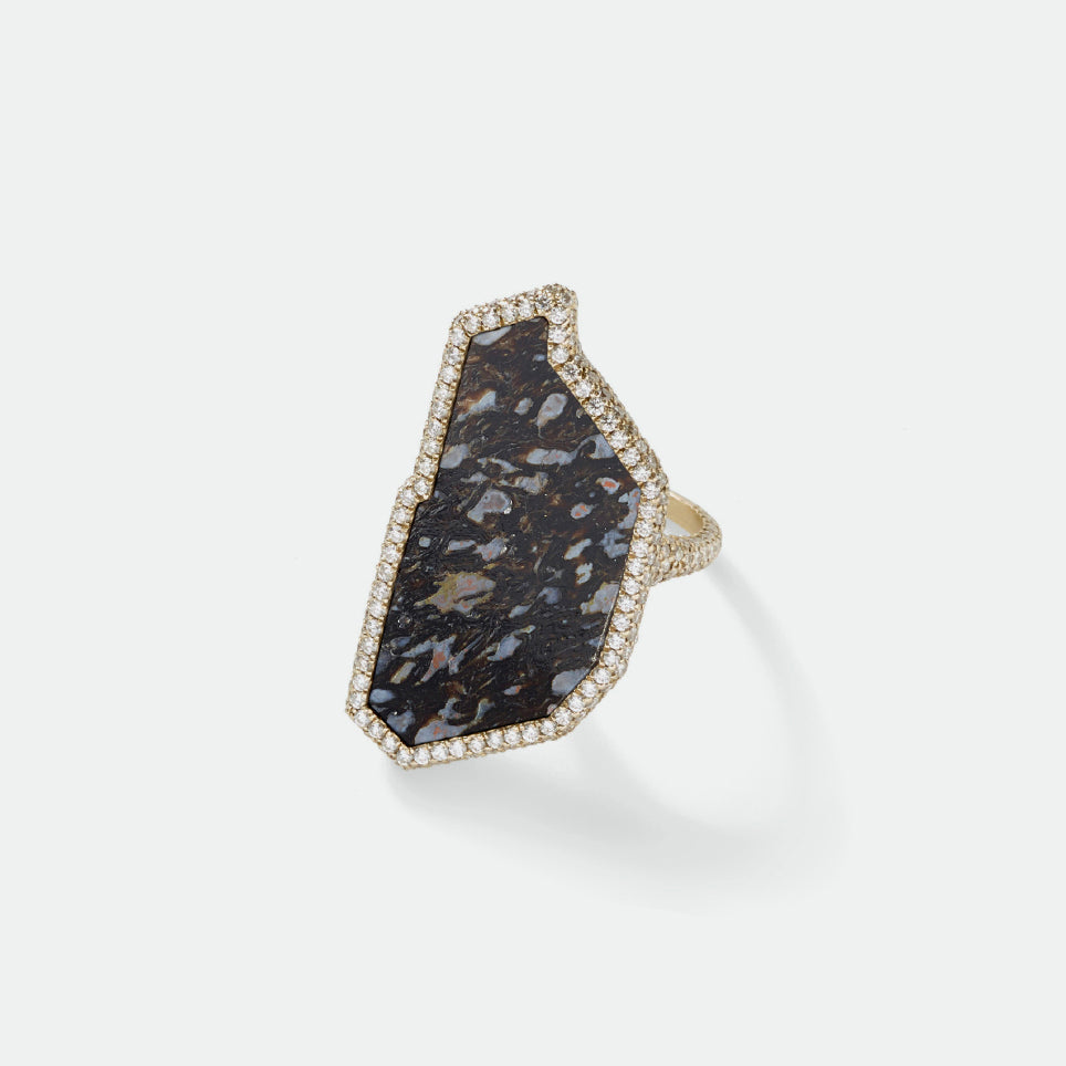 Flawless Black Fossilized Dinosaur Bone Ring