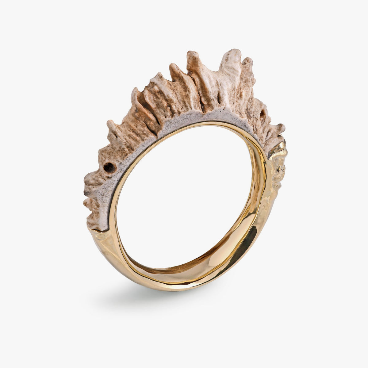 Shed Moose Antler Bangle in Yellow Gold