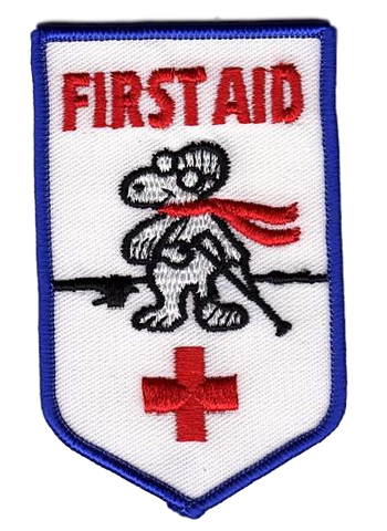 H-273 First Aid - BenchmarkSpecialAwardsCo