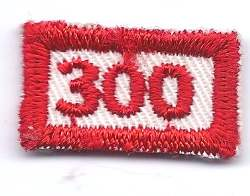 B-459 300 Mileage/Number Segment-rectangle (limited stock, this patch will be discontinued) - BenchmarkSpecialAwardsCo