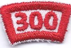 B-464 300 Mileage/Number Segment-curve (limited stock, this patch will be discontinued) - BenchmarkSpecialAwardsCo