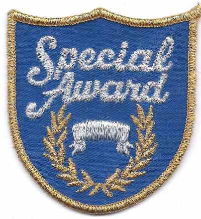 H-261 Special Award - BenchmarkSpecialAwardsCo