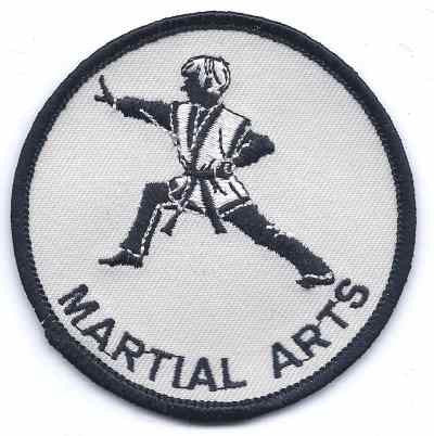 S-321 Martial Arts - BenchmarkSpecialAwardsCo
