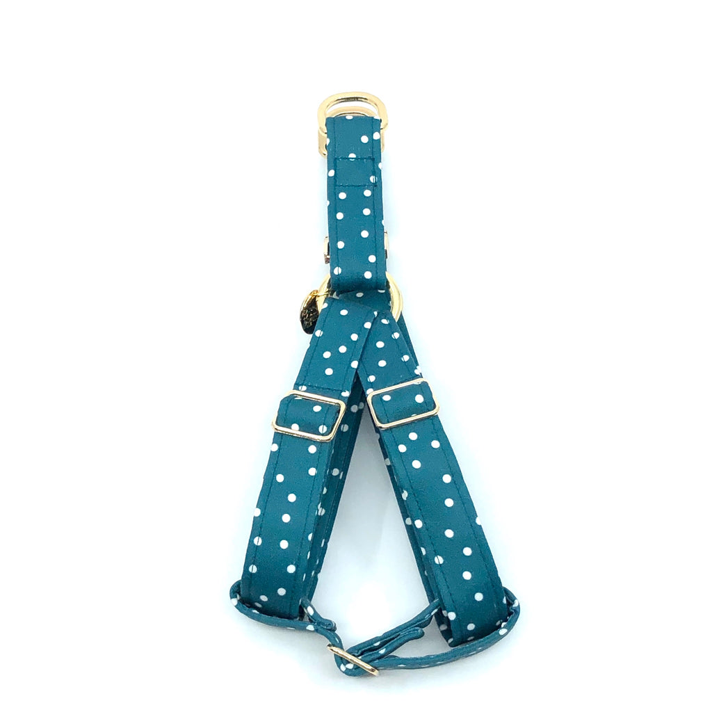 """Teal"" Strap Harness"