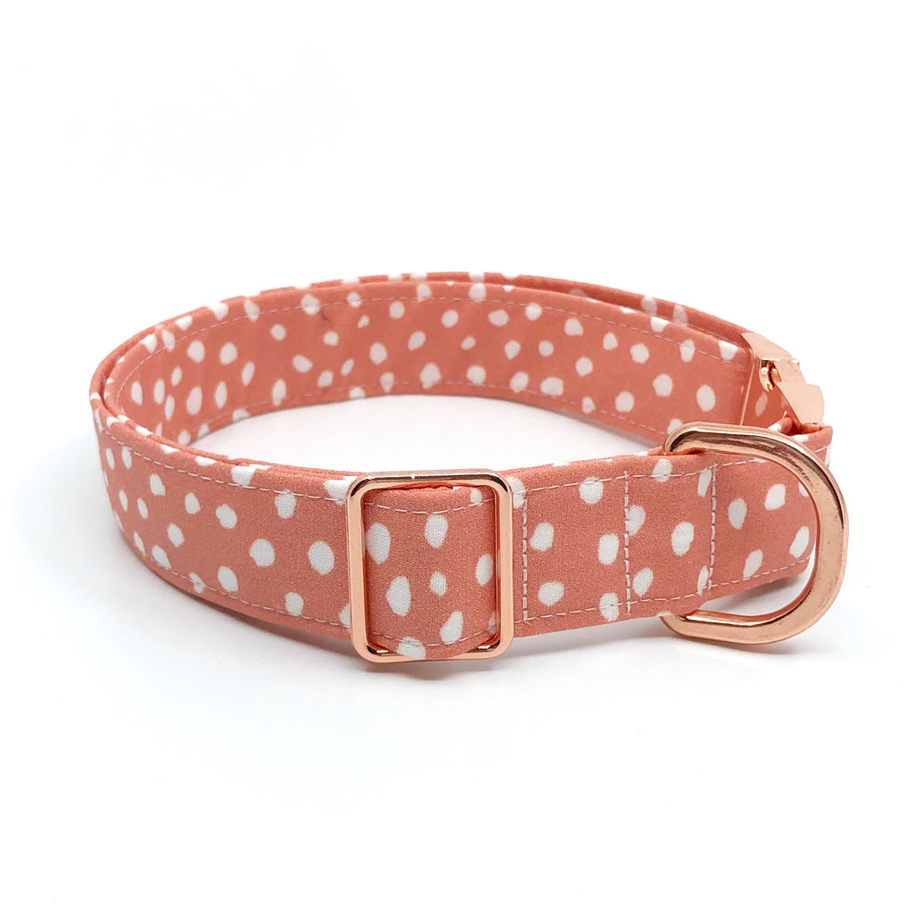 'Coral' Collar