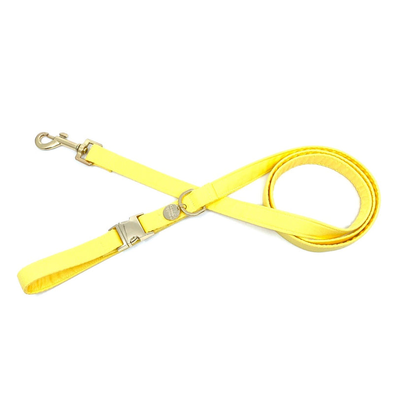 """Mellow Yellow"" Lead"