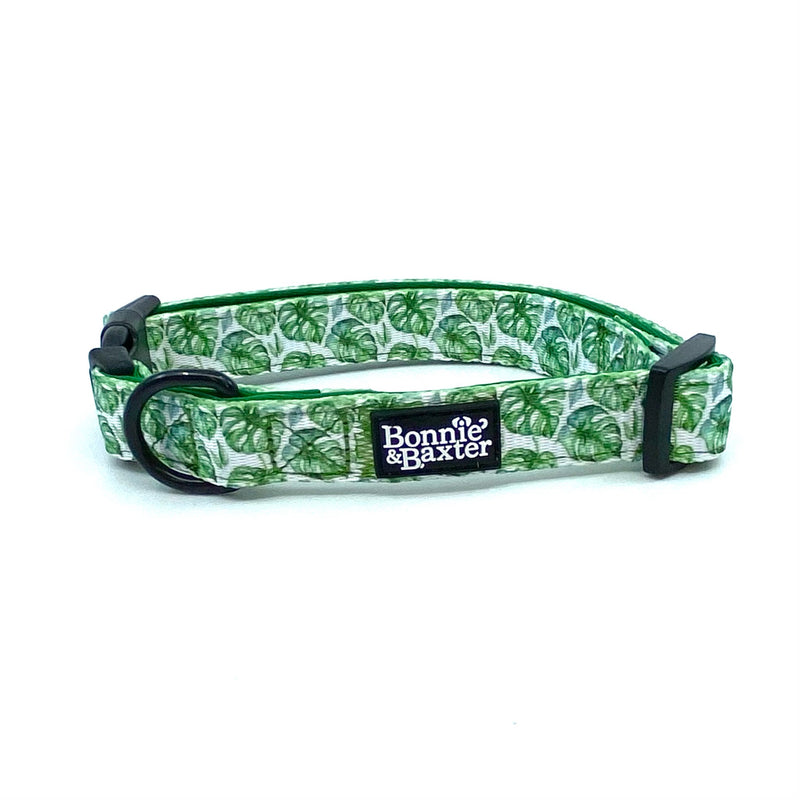 """Monstera Mania"" Collar"