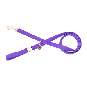 """Royal Purple"" Lead"
