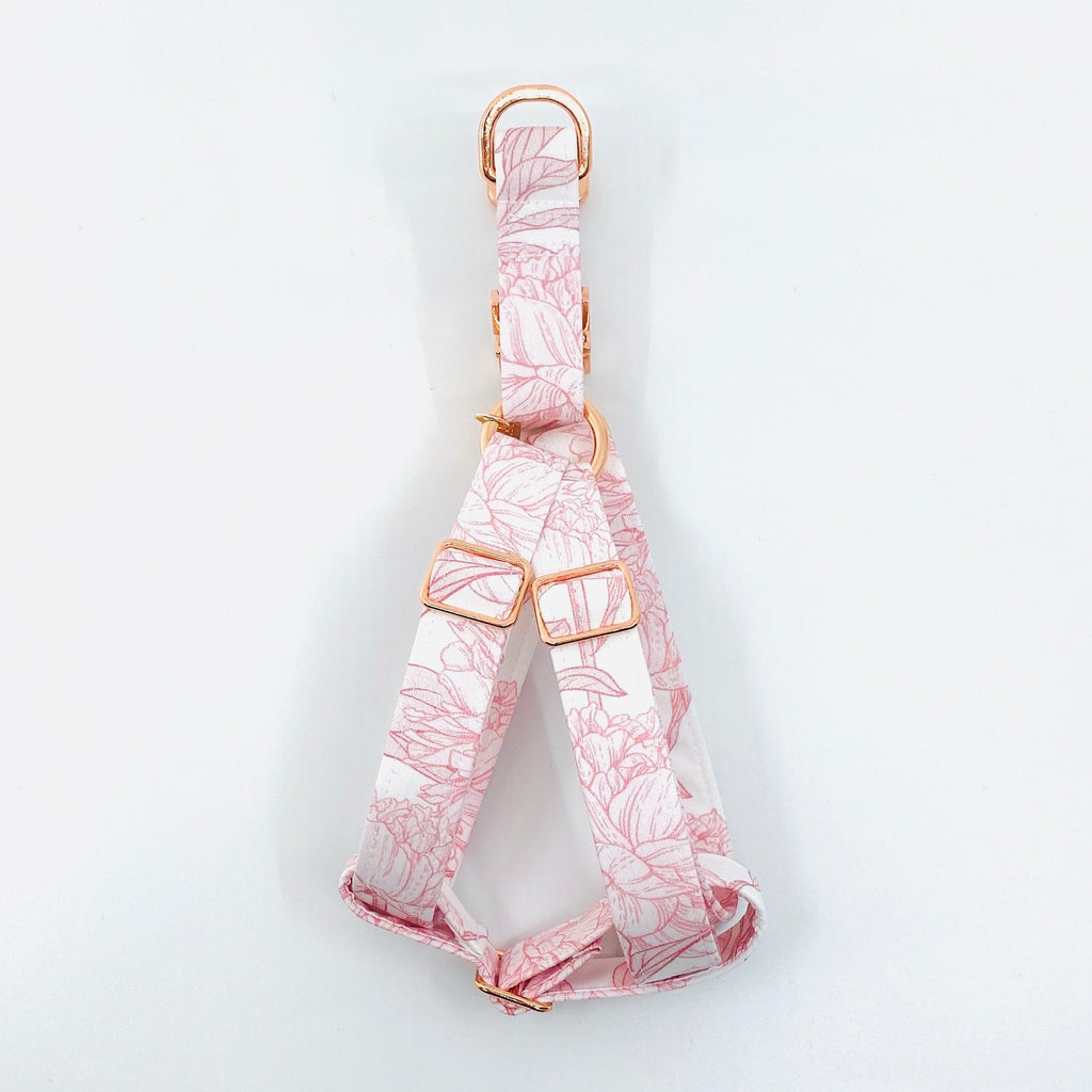 """Bailey"" Strap Harness"