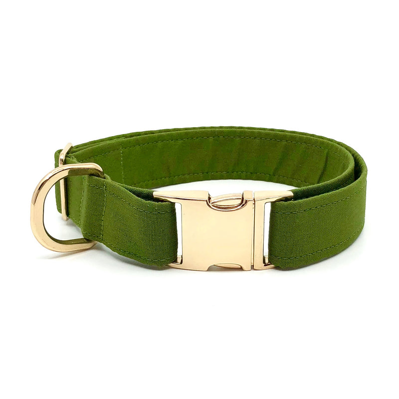 """Renegade"" Collar"
