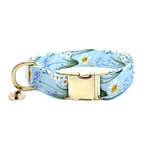 """Lake Breeze"" Collar"
