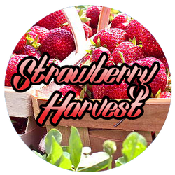 E-lixir - Strawberry Harvest