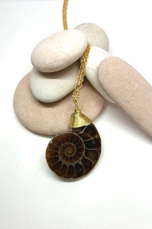 Echo Pendant Ancient Ammonite B