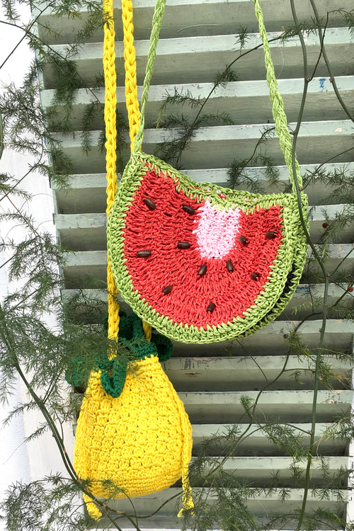Bag Lillie Fruit Pineapple or Watermelon Purse