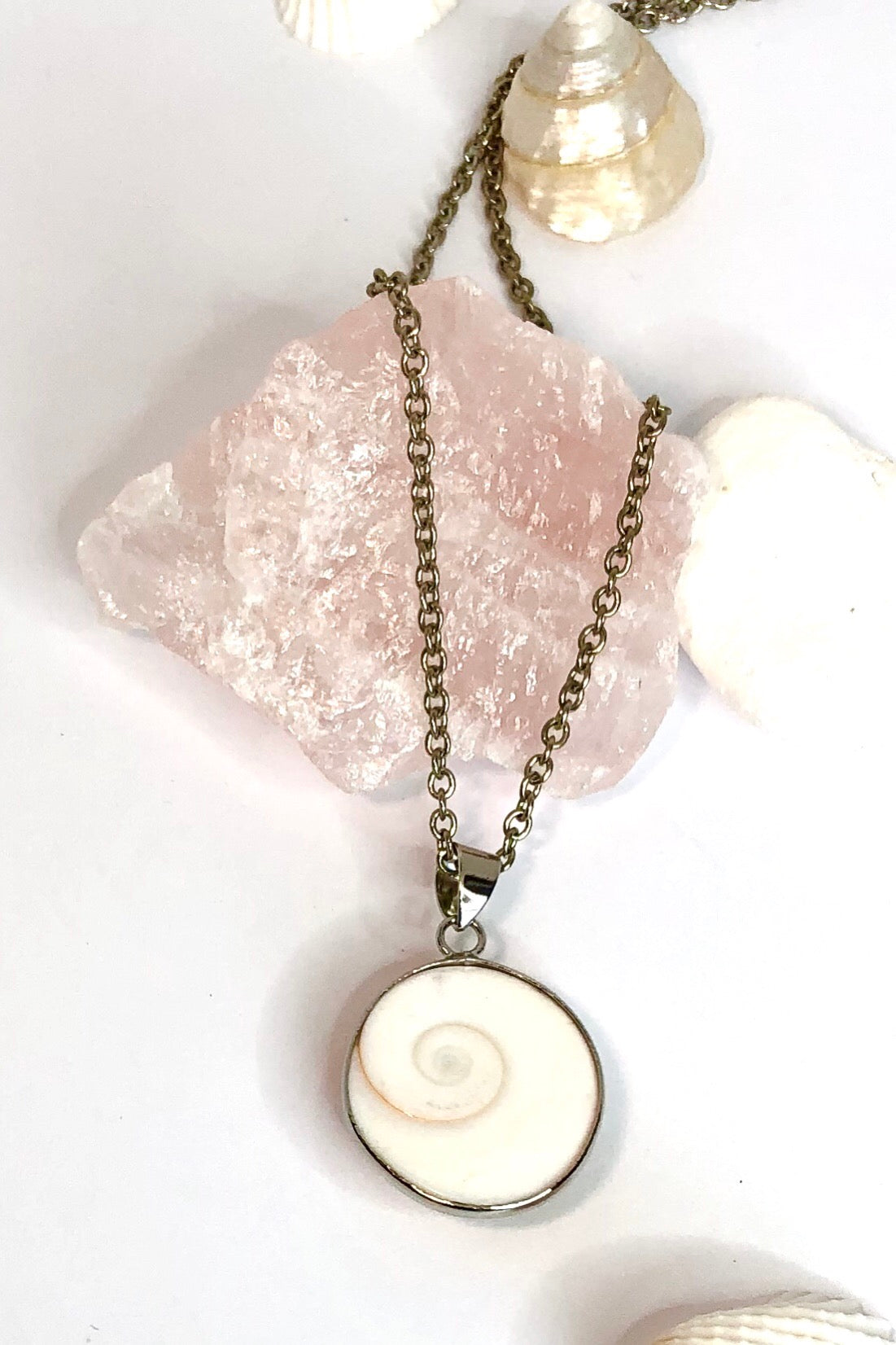 This pendant is known as Shiva Shell, and sometimes called Pacific Cat's Eye.