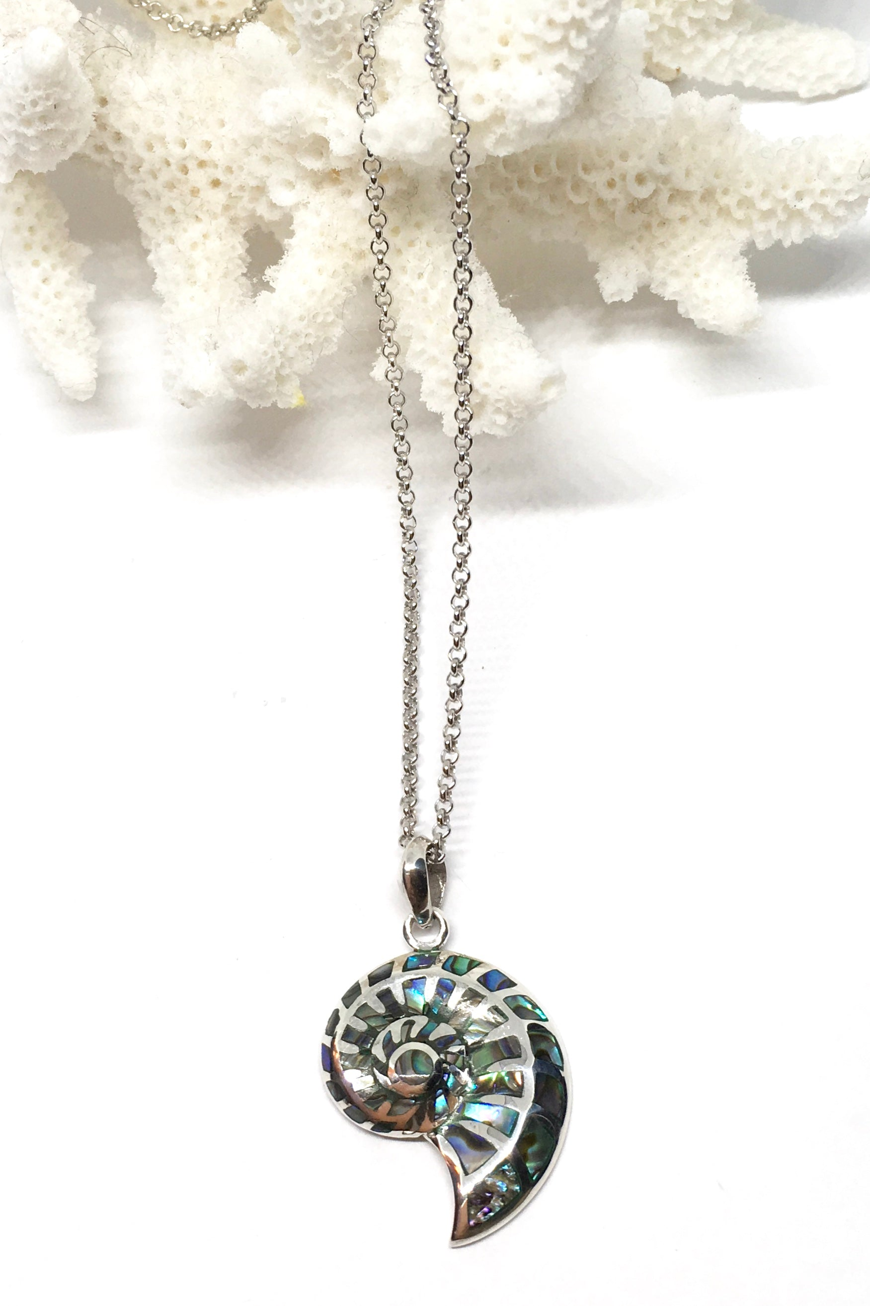 Necklace Cay Nautilus shell. A divine swirl of iridescent Paua shell with 925 solid silver detailing
