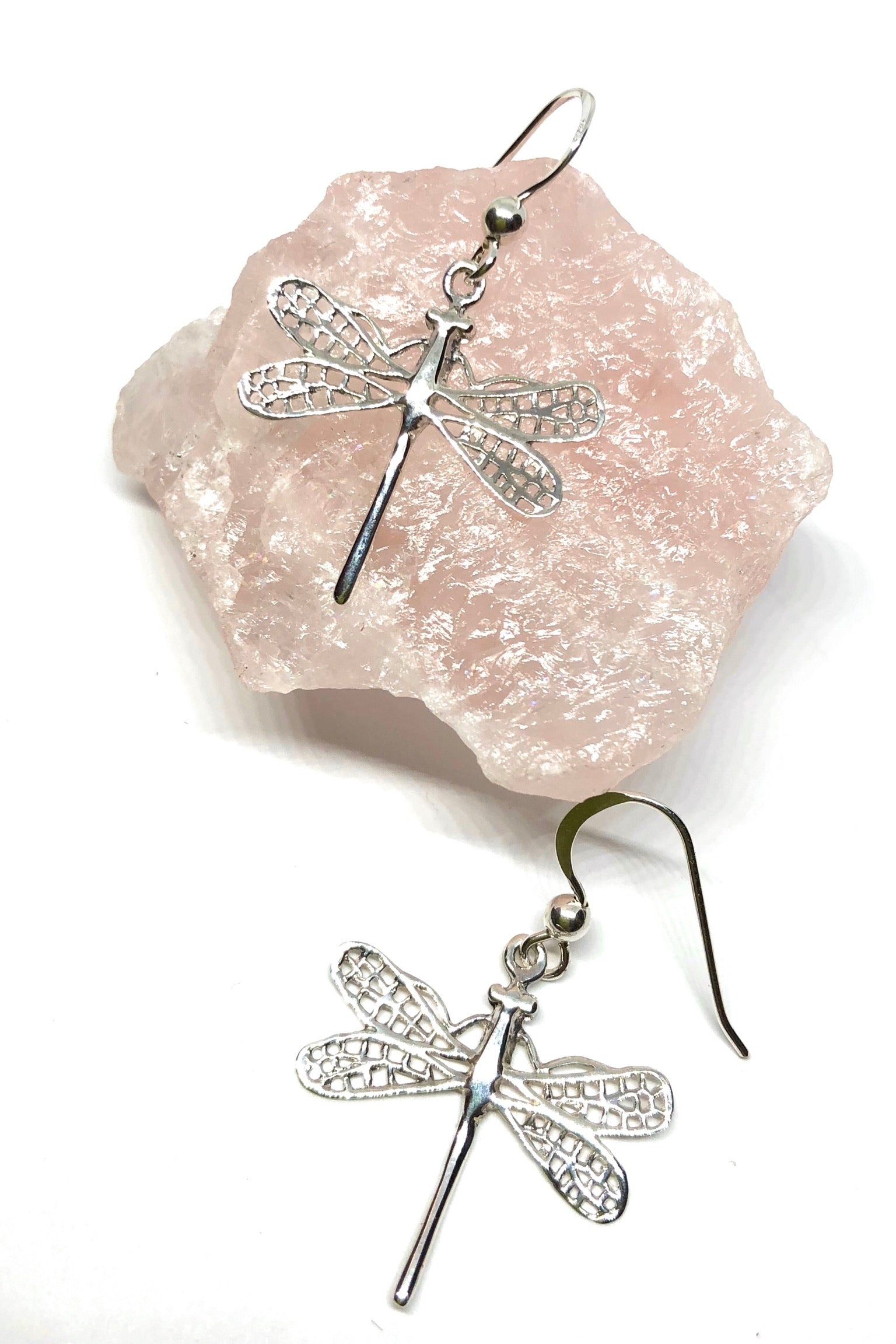 Silver Earrings Dragonfly Silhouette