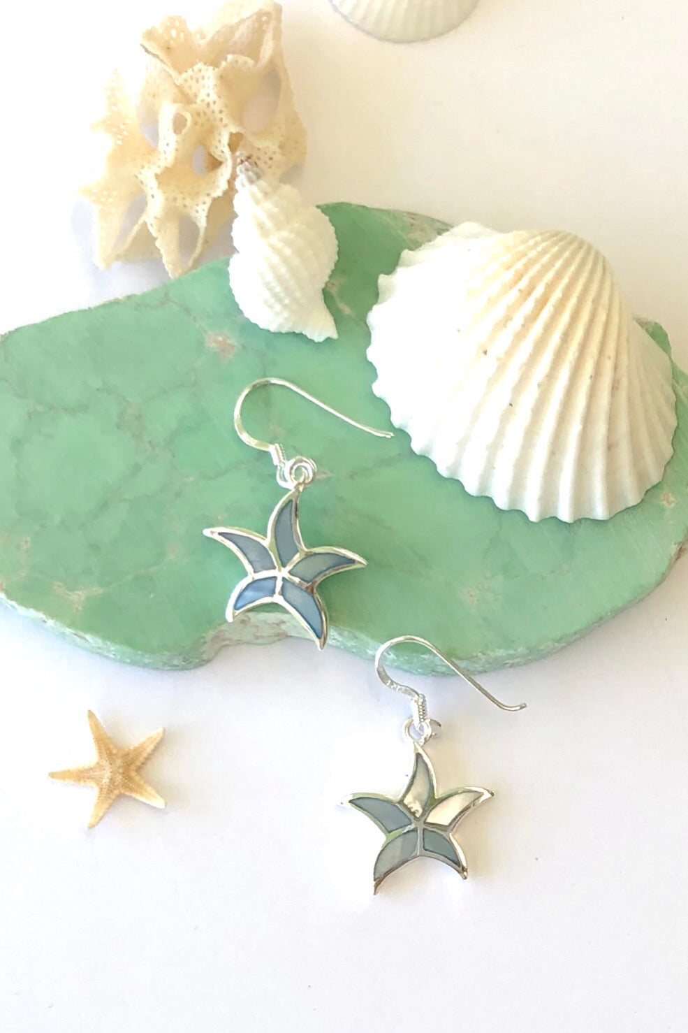 Gorgeous dainty starfish boasting the best of the iridescent shell.
