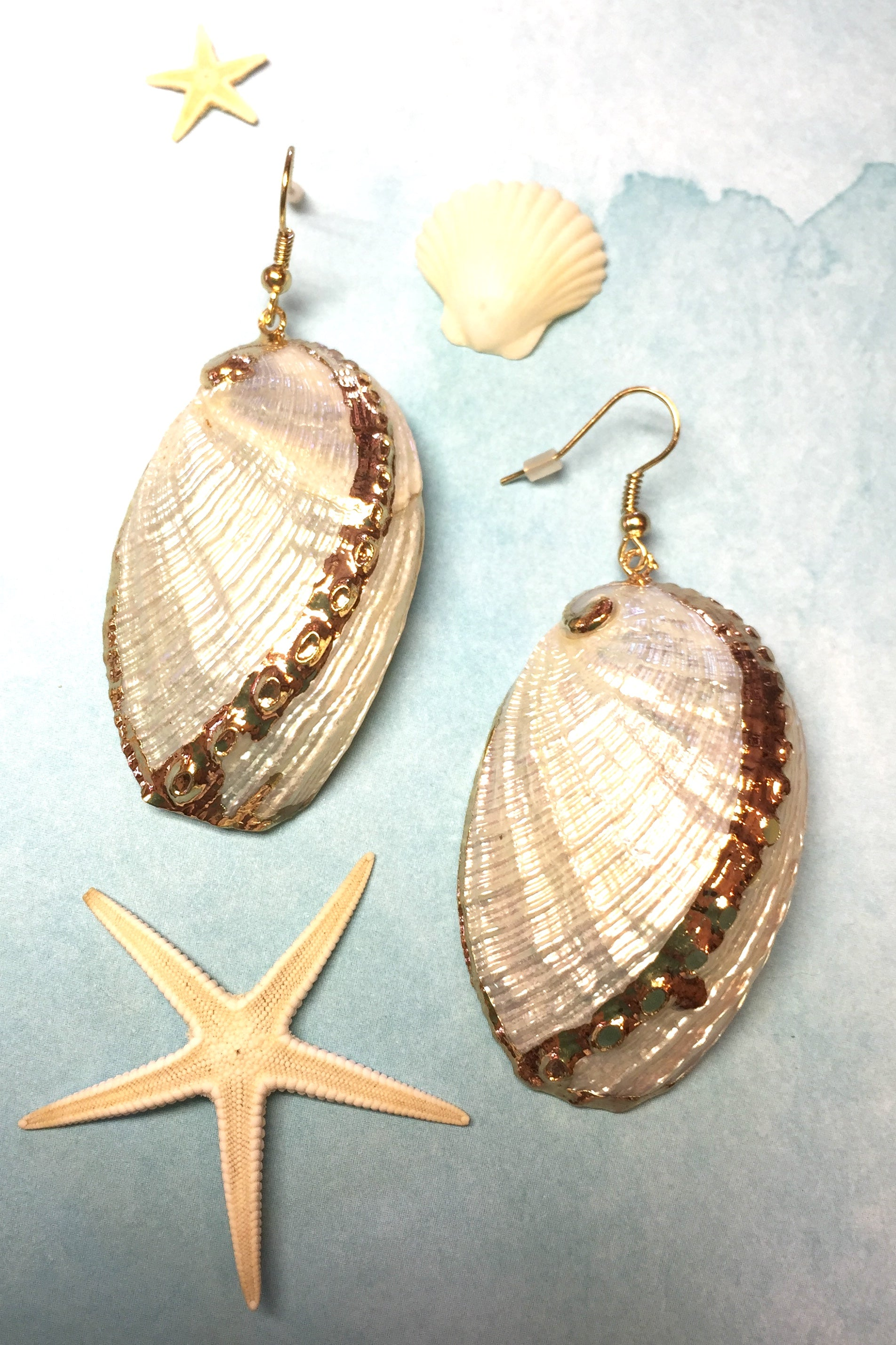 Earrings Golden Wing Shell, seashell earrings with gold edge, beach jewellery