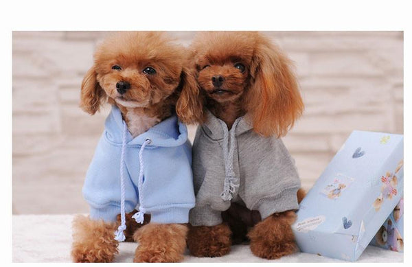 Adorable Dog Hoodies! -  - justpugstuff.com