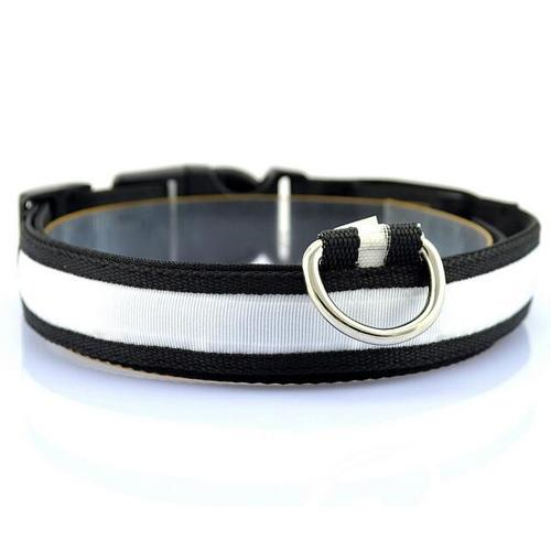 Glow-In-The-Dark LED Safety Collar - White / S - justpugstuff.com