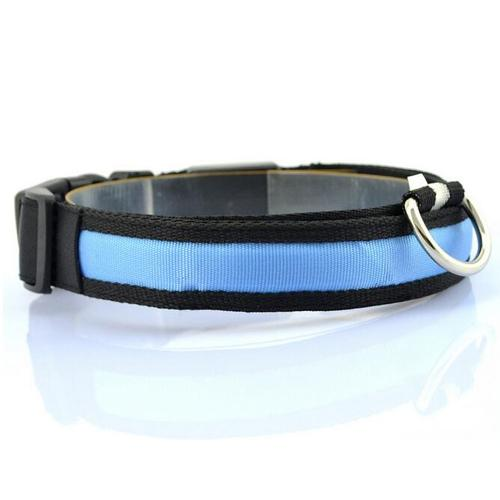 Glow-In-The-Dark LED Safety Collar - Blue / S - justpugstuff.com