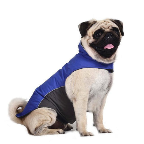 Waterproof Outdoor Jacket - Dark Blue / M - justpugstuff.com