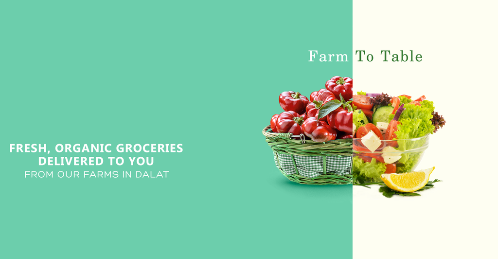 farm to table groceries