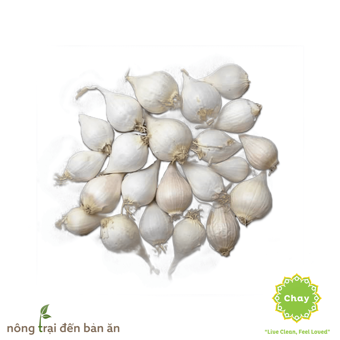 Ly Son Garlic 0,5kg