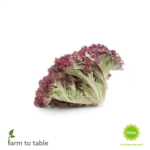 Red Lollo Rossa Lettuce 0,2-0,3 kg en House of Chay